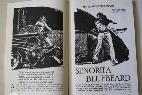 Noir Crime Fiction Spicy Detective Senorita Bluebeard