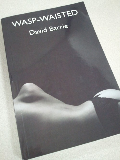 Noir Crime Fiction Wasp-Waisted by David Barrie