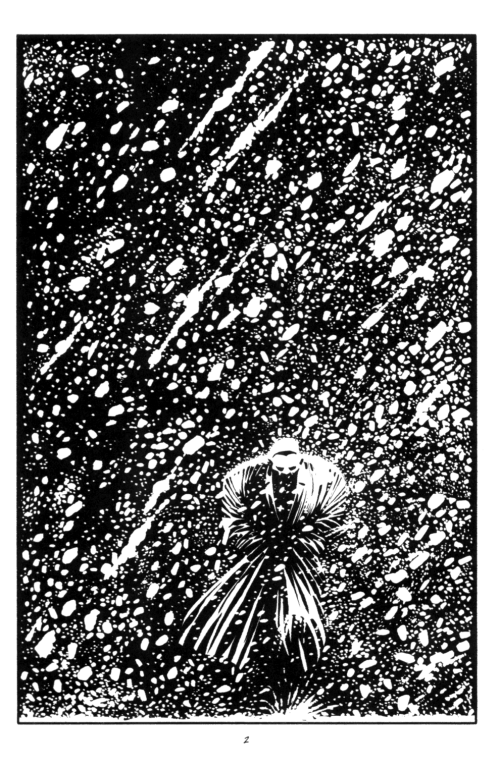Noir Art Frank Miller