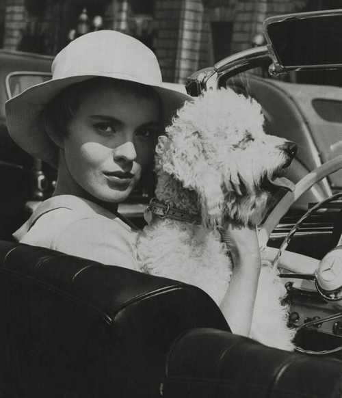 Jean Seberg and Dog