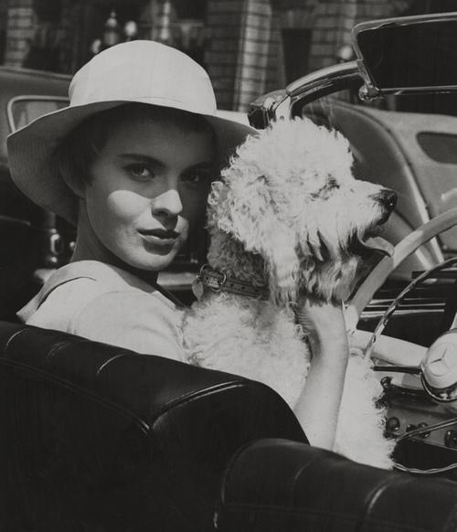 Jean Seberg and Dog