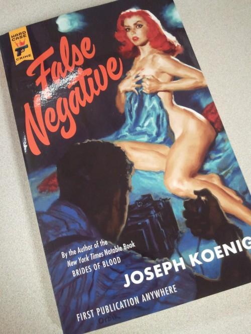 Noir Crime Fiction False Negative Joseph Koenig